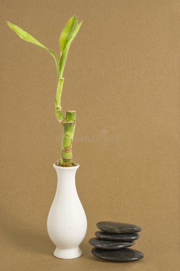 Bambou et pierres sur le papier de Brown photos stock