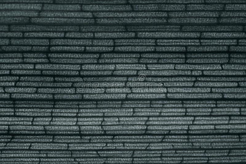 Bambou monochrome de texture image libre de droits