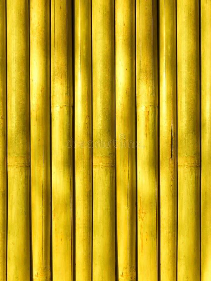 Bambou un fond abstrait photographie stock libre de droits