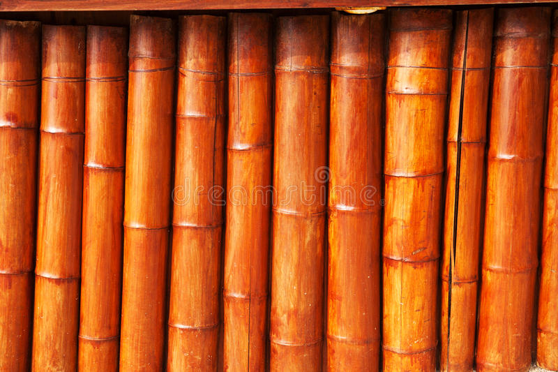Bambous photos stock