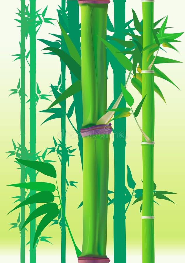 bambu royaltyfria foton