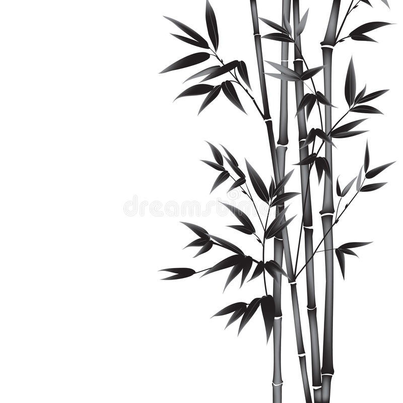 Bambu da pintura da tinta ilustração royalty free