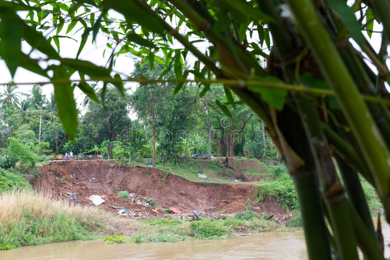 Bambu med jordskredet arkivbilder