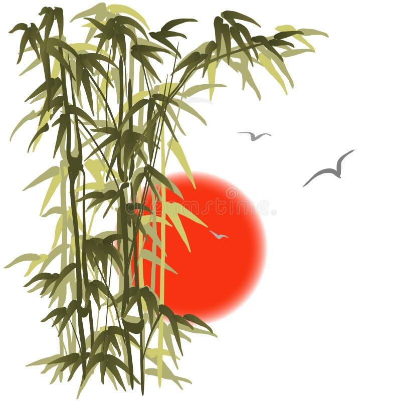 Bambu no fundo do por do sol ilustração do vetor