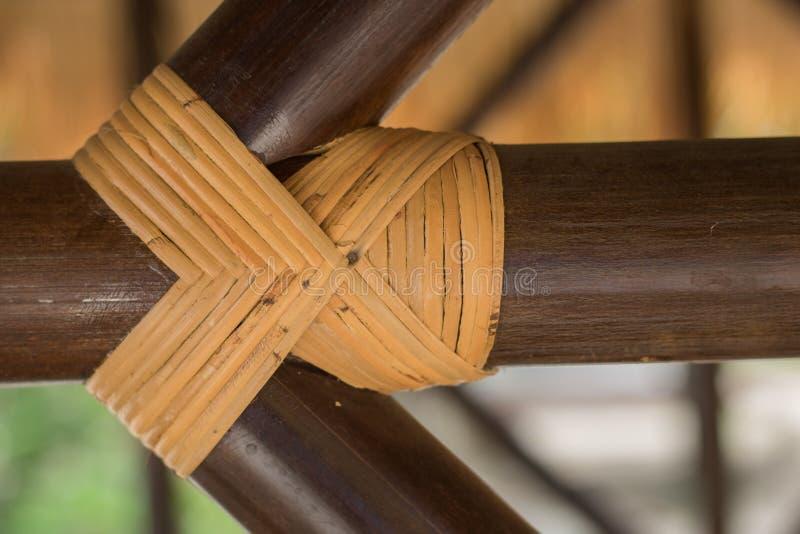 Bambu texturerar fotografering för bildbyråer