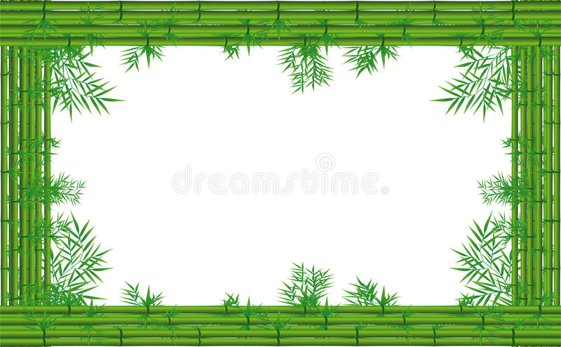 Bambu verde ilustração do vetor