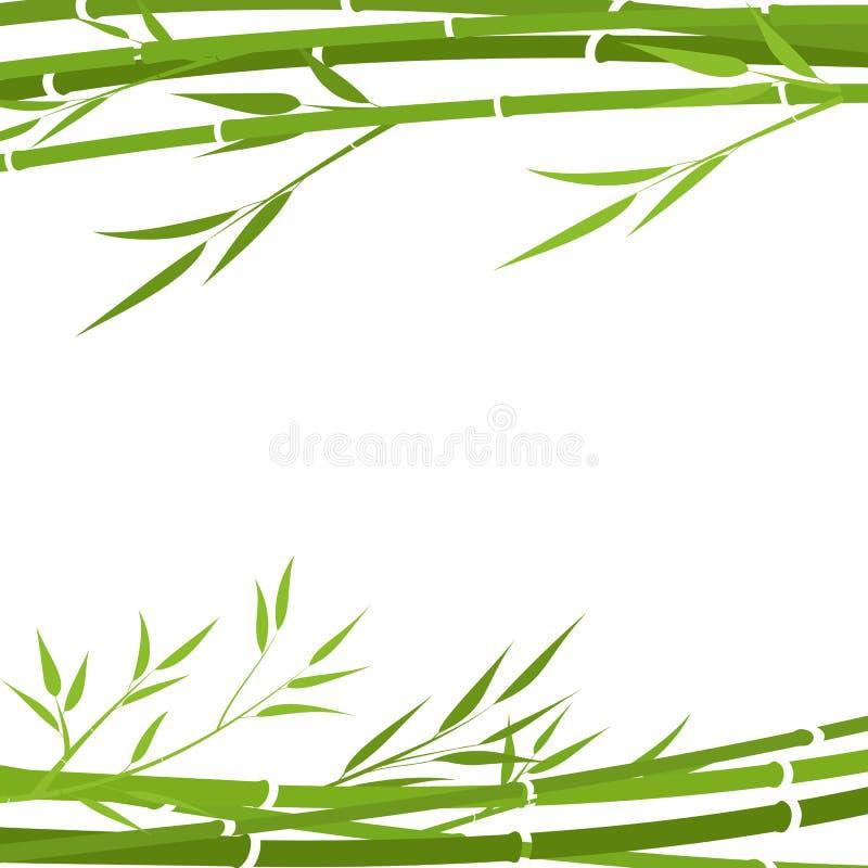 Bambubakgrund, ram, vektorillustration Bambu p? white arkivfoto
