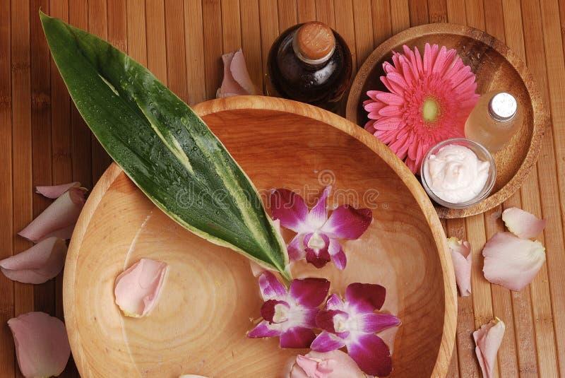 bambubrunnsort royaltyfri foto