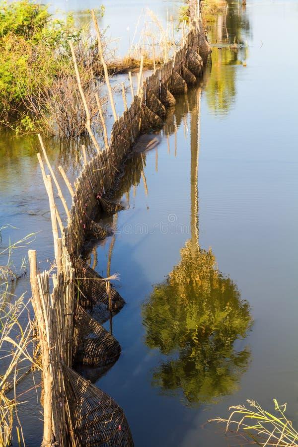 Bambufiskfälla fotografering för bildbyråer