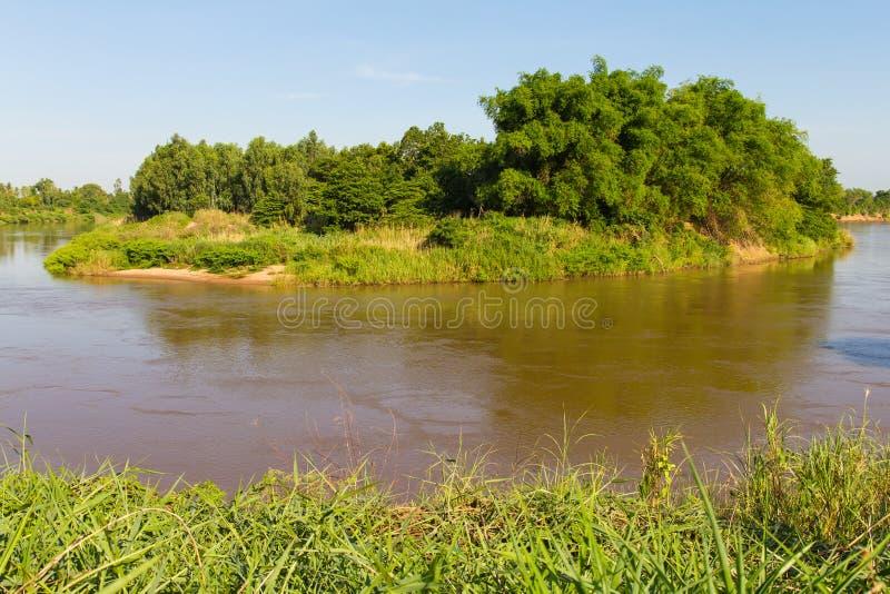 Bambuflodö arkivbilder