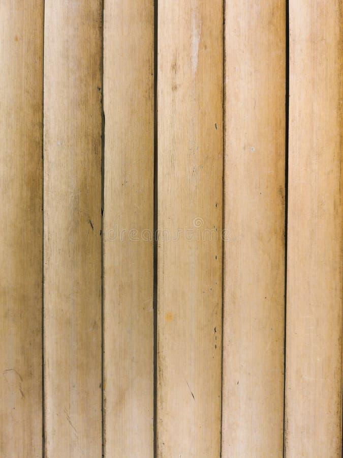 Bambugolv royaltyfria bilder