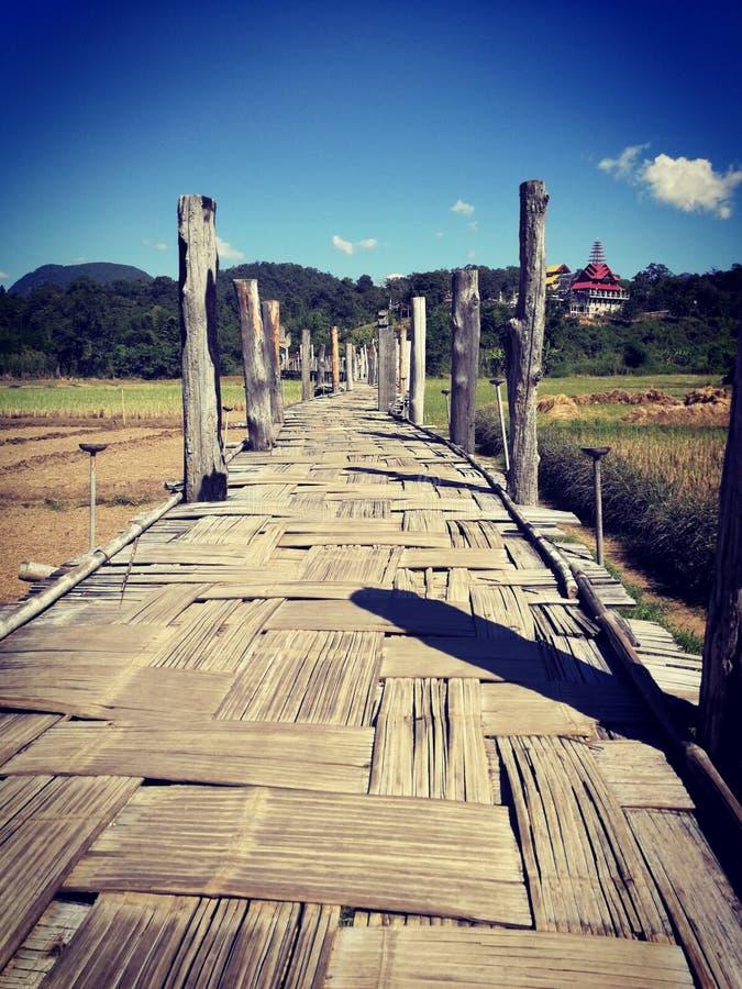 Bambugolvbro royaltyfria bilder