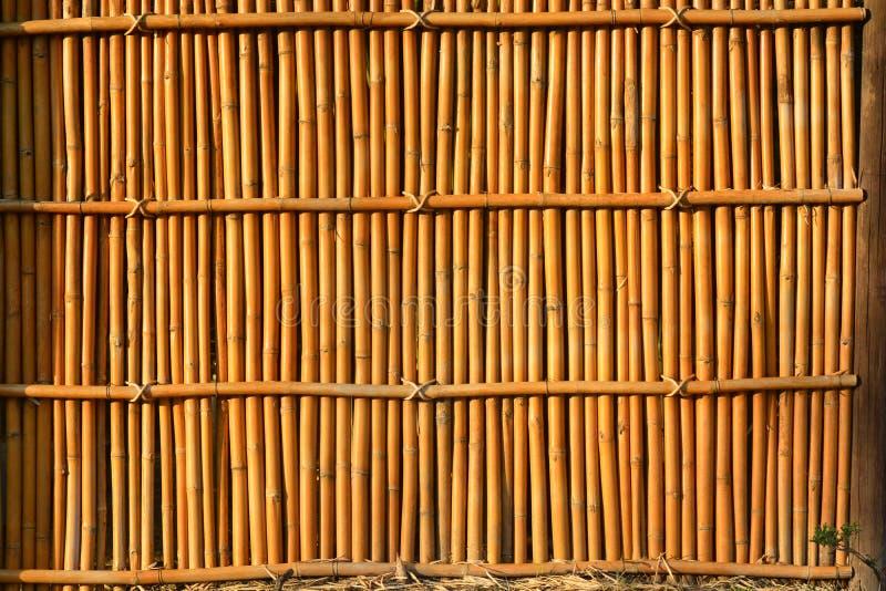 Bambuhusvägg royaltyfri bild