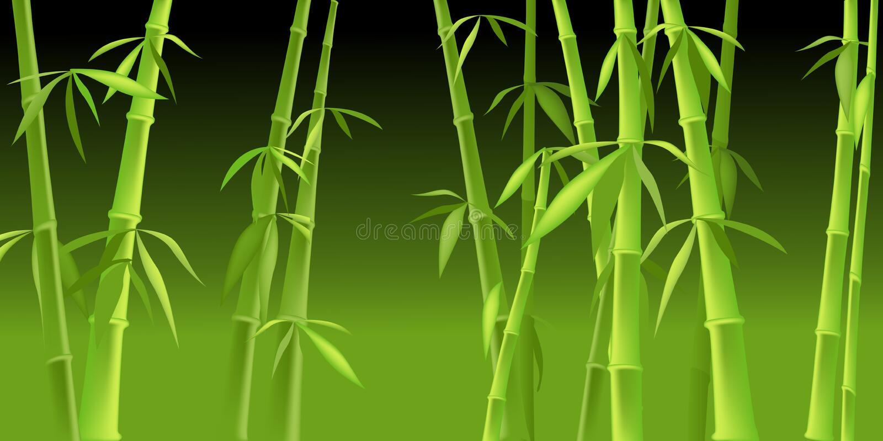 bambukinestrees vektor illustrationer