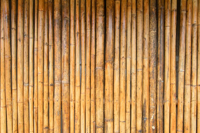 Bambumodellbakgrund arkivfoton