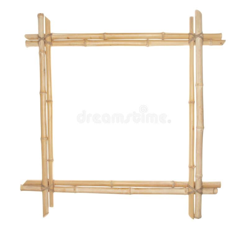 Bamburam som binds upp med repet som isoleras på vit bakgrund royaltyfria foton