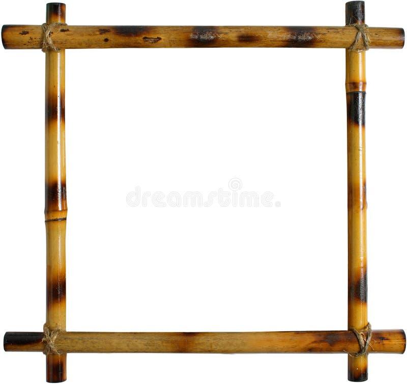 Bamburam som isoleras på vit bakgrund royaltyfria bilder