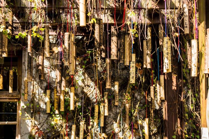 Bambus ściana w Tajwan zdjęcie stock