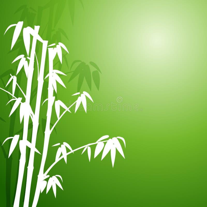 bambus stock abbildung illustration von feld exotisch