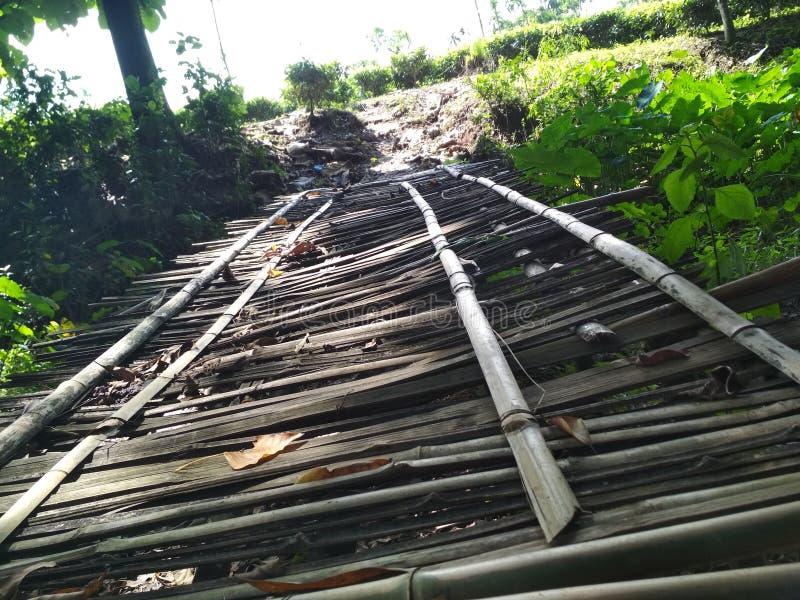 Bambus-bridg lizenzfreies stockbild