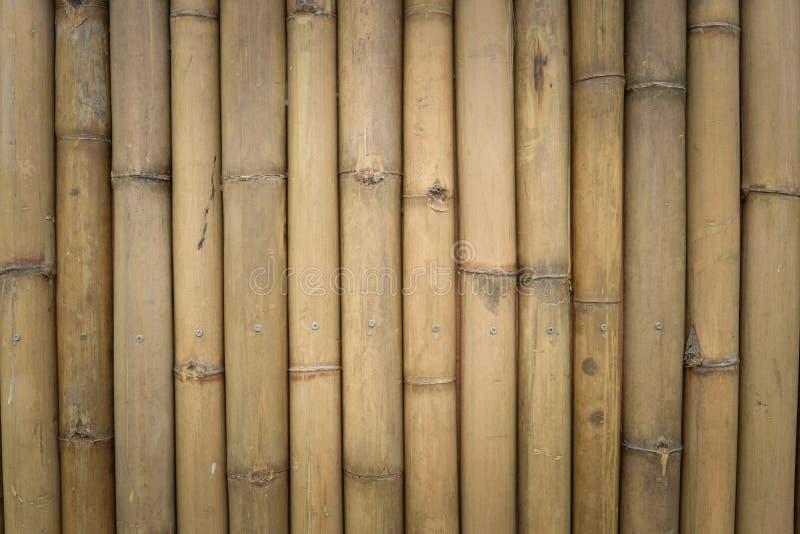 Download Bambus ścienna tekstura obraz stock. Obraz złożonej z asia - 57662469