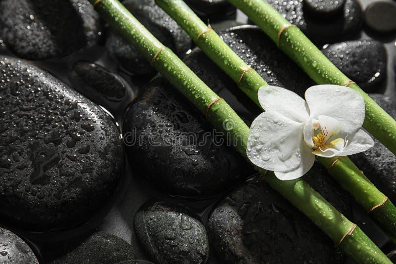 Bambus gałąź, orchidea i zdrojów kamienie w wodzie, zdjęcia stock