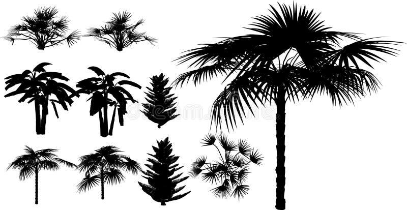 Bambus- und tropische Anlage lizenzfreie abbildung