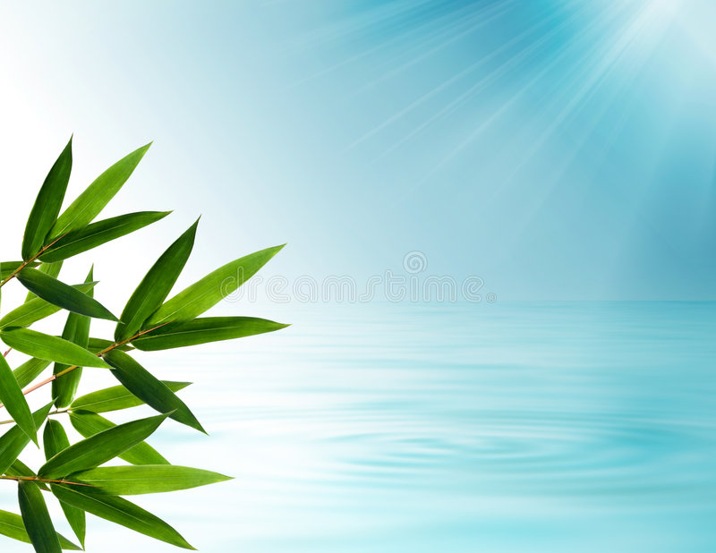 Bambus verlässt Hintergrund stock abbildung