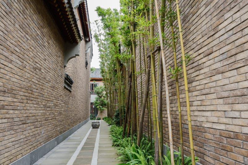 Bambus w alei między Chińskimi taditional budynkami zdjęcie stock