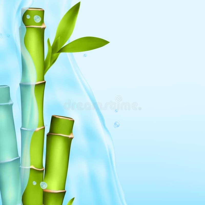 Bambus w wodnym pluśnięciu ilustracji