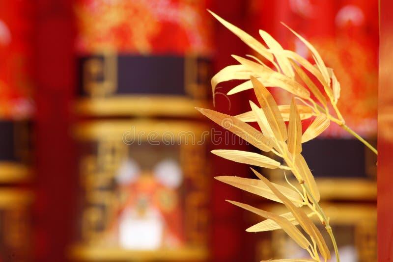bambus złoty zdjęcie stock