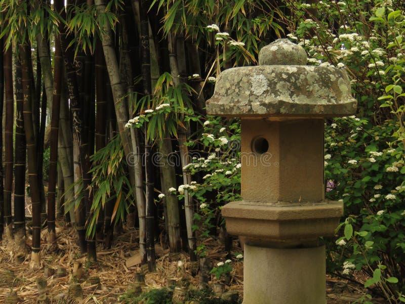 Bambusa i betonu ptaka dom zdjęcie royalty free