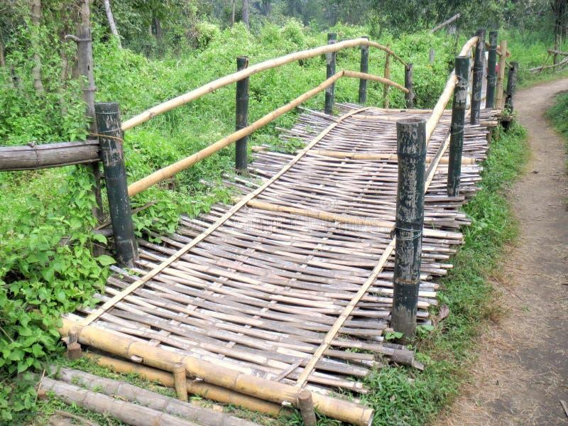 Bambusa most obrazy royalty free