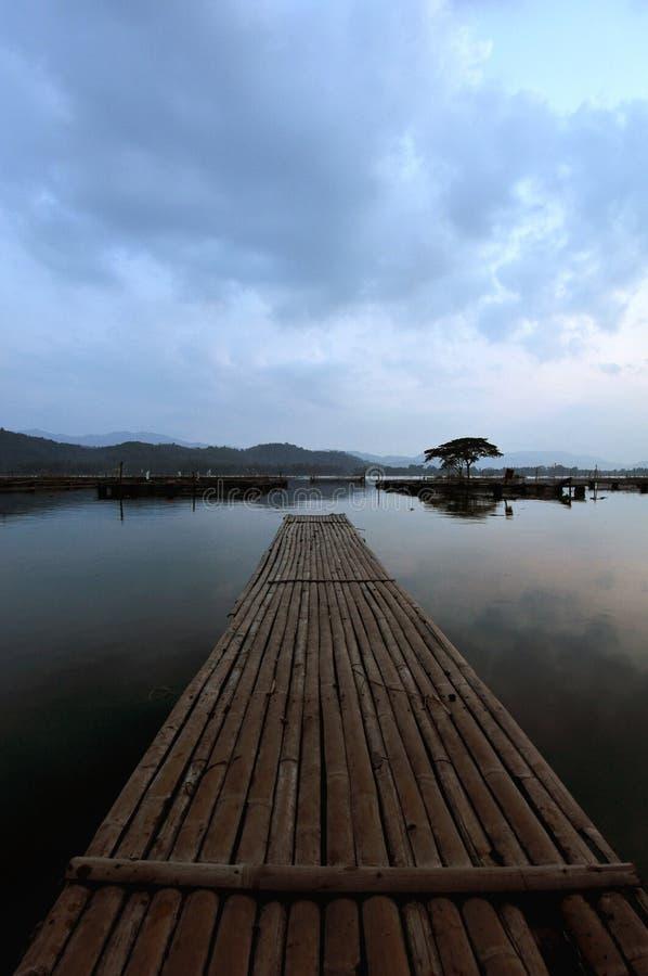 Bambusa most zdjęcia stock
