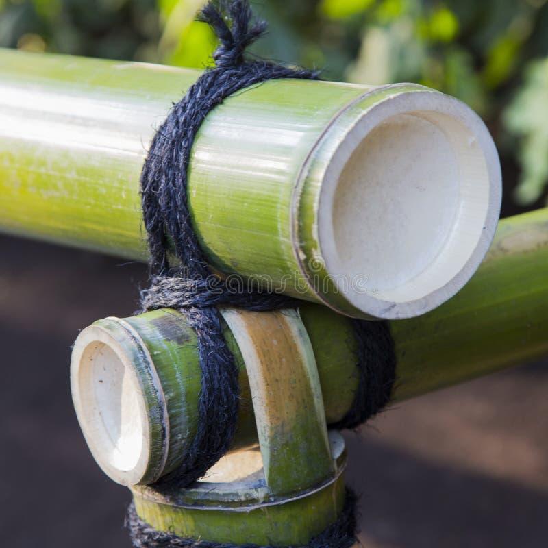 Bambusa ogrodzenie dołączający arkaną zdjęcia stock