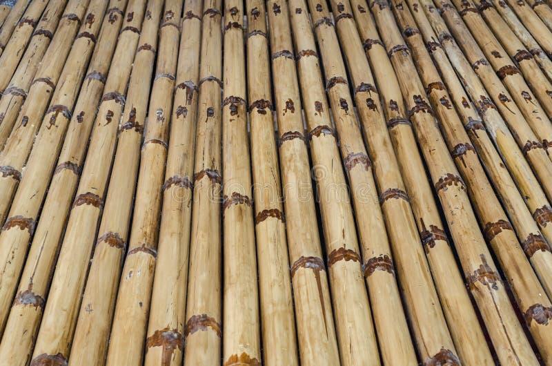 Download Bambusbeschaffenheit stockbild. Bild von alter, hartholz - 26355329