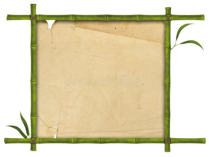 Bambusfeld lizenzfreies stockbild