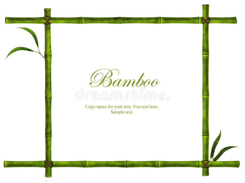 Bambusfeld lizenzfreies stockfoto