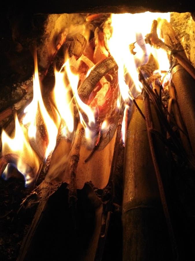 Bambusfeuer stockbild