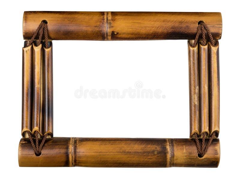 Bambusfotofeld getrennt auf Weiß stockfotografie