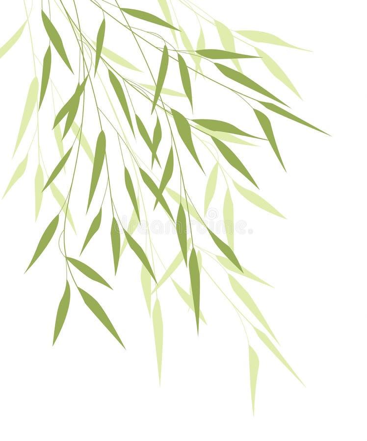 Bambusgrünblätter vektor abbildung