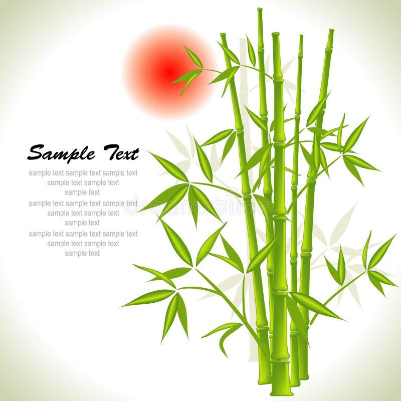 Bambushintergrund und Sonne lizenzfreie abbildung