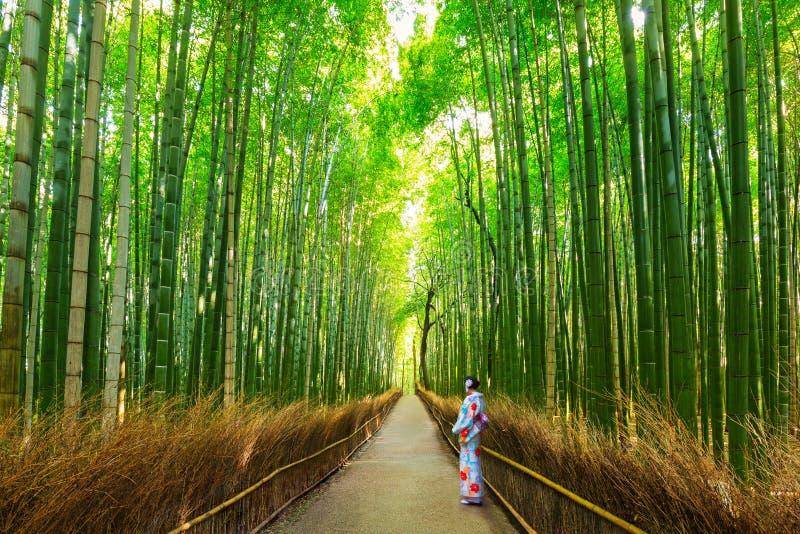 Bambuskog av Arashiyama nära Kyoto, Japan royaltyfri foto