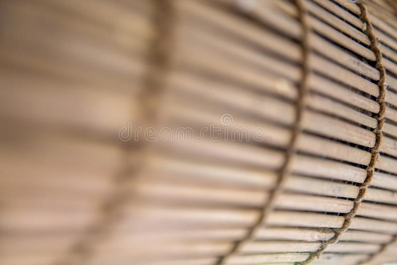 Bambuskuggor royaltyfri fotografi