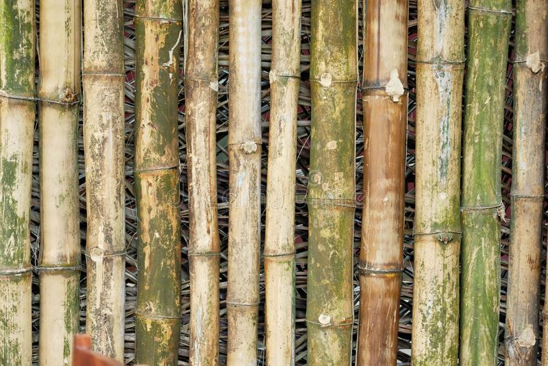 Bambusowa barkentyna Starzejący się drewno tekstury Orientalny tło obrazy royalty free