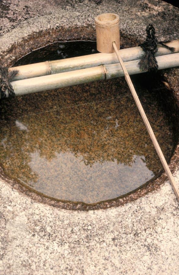 bambusowa basenowa kopyści wody zdjęcia royalty free