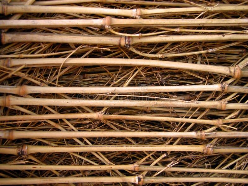 bambusowa konsystencja chrustowa zdjęcia royalty free