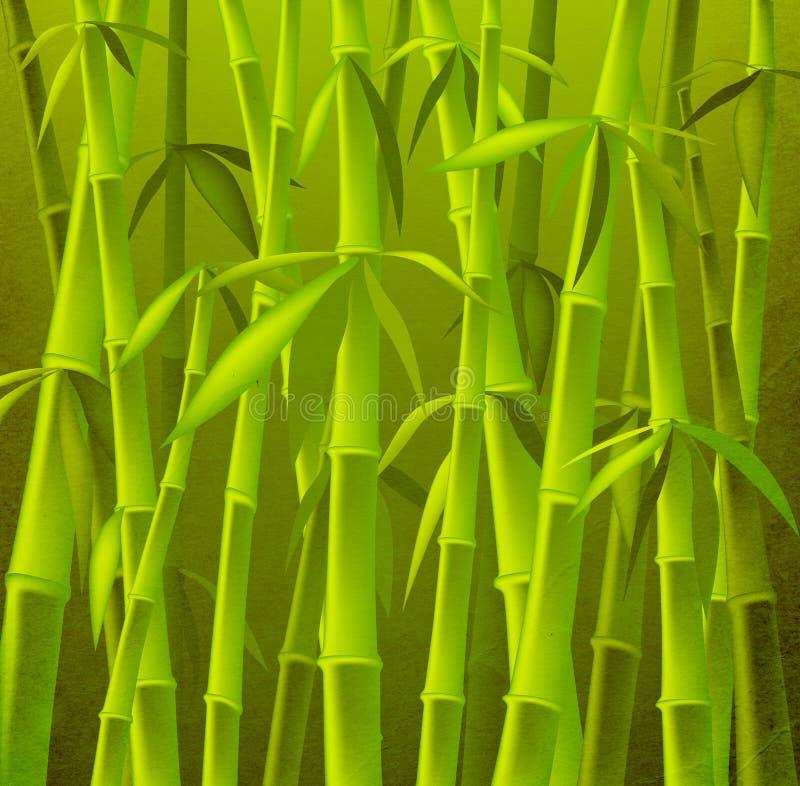 bambusowi drzewa ilustracja wektor