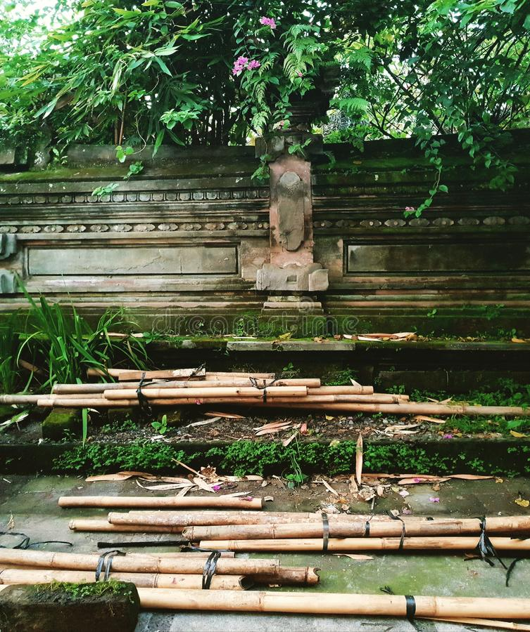 Bambusowi słupy, Ubud, Bali obraz stock