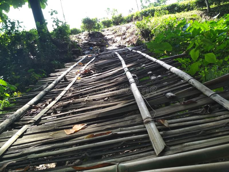 Bambusowy bridg obraz royalty free